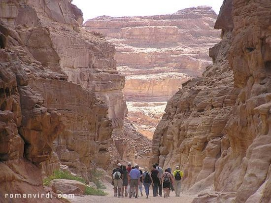 Private excursion: Safari day trip to Colored Canyon in Nuweiba from Dahab
