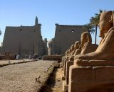 Private excursion: Luxor sightseeing day trip from Gouna by Bus